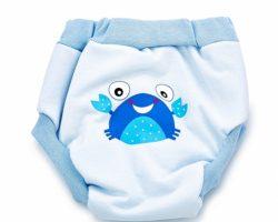 BabyJem Yumuşak Alıştırma Külodu 2 Yaş | Mavi