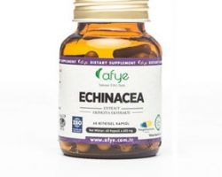 Echinacea Ekinezya Ekstraktı 60 Kapsül Kullananlar