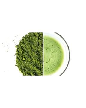 Matcha Tozu Japon Çayı G Kullananlar